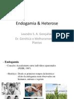 Endogamia