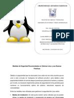 Medidas de Seguridad Recomendadas en Sistema Linux y Sus Buenas Prácticas