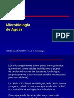 Curso SJ Microbiología