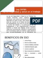 Ley 29783 Repaso