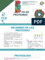 Recambio de Proteinas