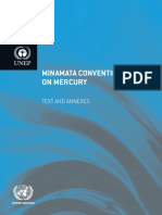 Minamata Convention on Mercury_booklet_English.pdf