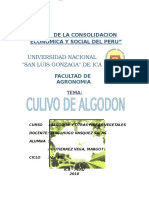 239858902-Algodon-trabajo-de-Algodonero (3).docx