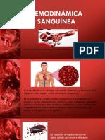 Hemodinámica sanguínea