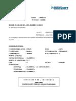 EJEMPLO DE INFORME TÉCNICO DE PETITORIO MINERO