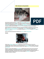 Fish Diseases and Parasites