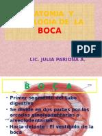 Anatomia y Fisiologia de La Boca