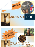 Marketing Proyecto Final Jorandina
