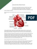 Jantung Dan Sistem Sirkulasi Manusia