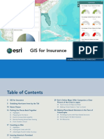 Insurance Mapping GIS.pdf