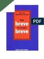 Modulos_Cade B. Guia Breve de Terapia Breve PDF