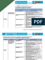 Matriz de Competencias, Capacidades e Indicadores de Comunicación_2º