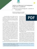 Suhayla Viana e Vitor de Pieri - Acordos Migratorios e Os Brasiguaios