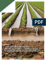 SafeUseOfWastewaterInAgriculture_ESP.pdf