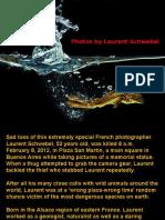 Photos by Laurent Schwebel
