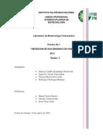 Práctica 1- Biotecnología Farmacéutica