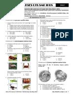 siaputsipapaket02-120406210146-phpapp02