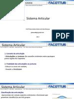 03 Sistema Articular