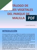 Herbario de Especies Vegetales Del Parque de Malilla