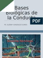 Bases Biologicas de La Conducta (1)