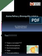 Bronquitis.ppt
