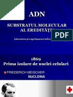 ADN-structura Primara Si Secundara. Transcriptia