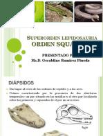 3 ORDEN SQUAMATA.pdf