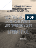 INFORME FINAL IVG_2010.docx