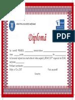 Diploma 2017 Etapa Pe Scoala