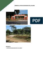 Estudio de Impacto Ambiental Lotificacion Bosques Del Calvario