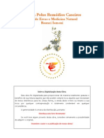Ervas - Livro - A Cura Pelos Remédios Caseiros - Guia De Ervas E Medicina Natural - Raunei Iamoni-Verif