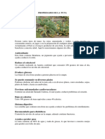 PROPIEDADES DE LA TUNA.docx