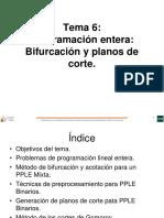PE Bifurcación y Planos de Cortes
