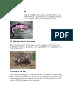 20 Animales de La Prehistoria Que Aun Viven