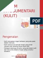 sistemintegumentaribyimana-130420020516-phpapp01.pptx