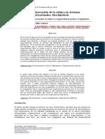 observacion de la cultura org..pdf