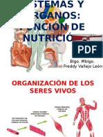 Clase 3 Organos y Sistemas Función Nutrición 2017
