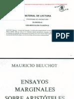 CAMINO CLAVE_ Argumentación Beuchot-Plantin