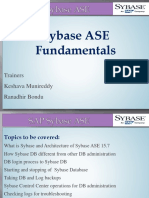 Sybase Fundamentals