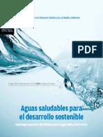 Aguas saludables para el desarrollo sostenible PNUMA.pdf