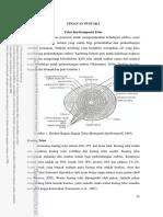 TELUR 2.pdf