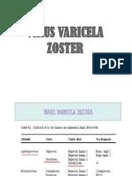 VARICELA ZOSTER