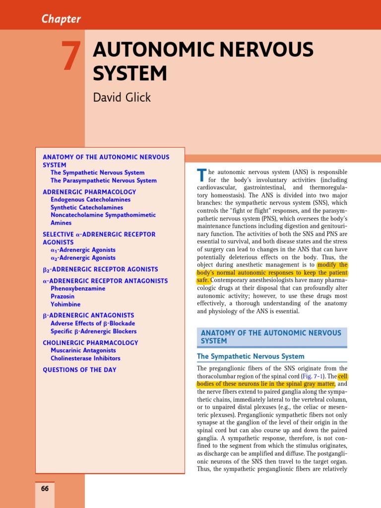 Chapter 7 - Autonomic Nervous System | Autonomic Nervous System ...