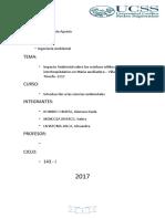 -Impacto Ambiental sobre los residuos sólidos interhospitalarios en María auxiliadora – Villa María del Triunfo- 2017