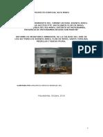 Informe de Calidad Ambiental (Erickson)