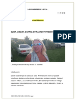 Informe Elisa Carrio