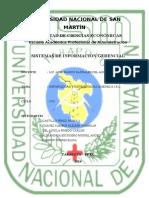 Plan de Sistema de Información Gerencial