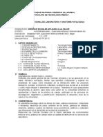 2017 Lab 1- Ciencias Sociales Aplicada a La Salud 09-04-2015 (2)