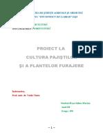 Proiect Cultura Pajistilor