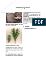 Juvenile (organism).pdf